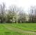Parco_primavera
